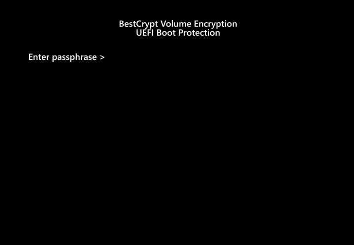 Screenshot Step 6 Encrypt with BestCrypt Volume Encryption